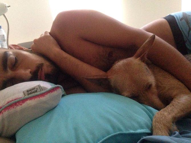 stromboli-and-derrick-deeply-asleep